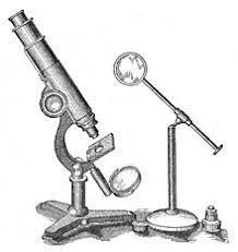 compound light microscope facts light microscope simple english wikipedia the free encyclopedia