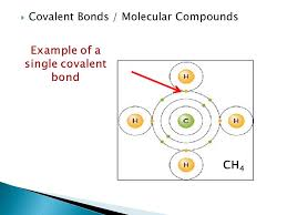 what you u0027ve learned so far u2026 atoms form bonds in more than one