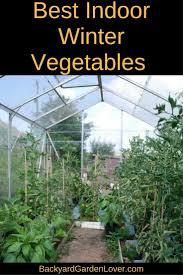 greenhouse for vegetable garden indoor winter vegetable garden backyard garden lover