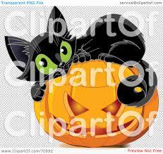 halloween pumpkin transparent background royalty free rf clipart illustration of a cute black kitten