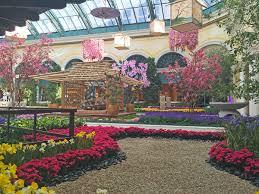 Botanical Gardens Bellagio by Spring Blooms At The Palazzo U0026 Bellagio Las Vegas Blogs