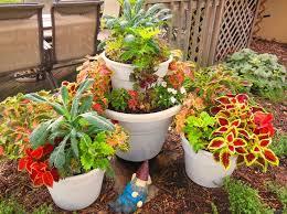 vegetable garden container ideas tin can herb container gardens