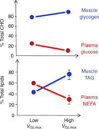 metabolic fuels regulating fluxes to select mix journal of
