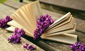 free photo book read relax lilac bank free image on
