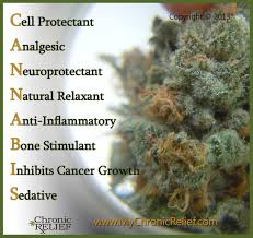 best medicine for inflammation cannabis 101 thc u0026 cbd chronic relief