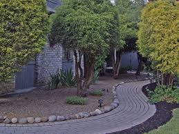 Backyard Trees Landscaping Ideas Garden Design Garden Design With Evergreen Trees Landscaping On