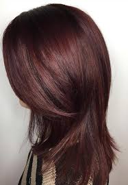 light mahogany brown hair color with what hairstyle 20 magical mahogany hair color ideas