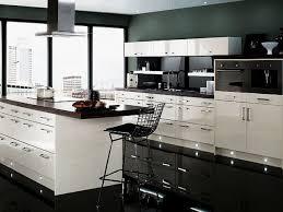 black kitchen design home design ideas murphysblackbartplayers com picture of kitchen design black cabinets and grey walls idolza