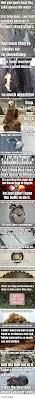 25 best memes about pun pun memes