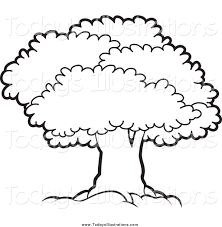 White Oak Tree Drawing Black And White Tree Clipart Chadholtz