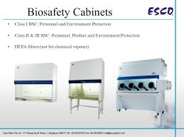 biological safety cabinet class 2 working safely in your biological safety cabinet ppt video online