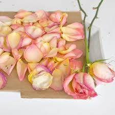 potpourri homemade rose petal potpourri popsugar smart living