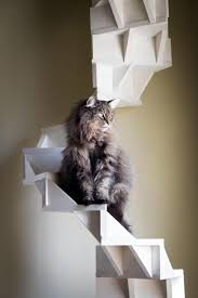 erin clanton cupp u0027s cat staircase was a hit with her kitties
