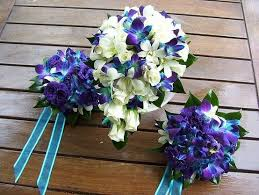 wedding flowers singapore blue purple singapore orchids the flowers zac always gets me and