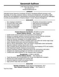 Recruiter Resume Example by Strikingly Beautiful Human Resources Resume 16 Combination Resume