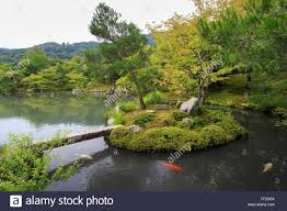 tenryu ji temprme zen garden rmake with carp backdrop of