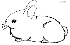easter bunny coloring pages that you can print picture of and eggs