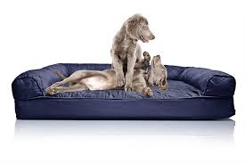 Sofa Bed Mattress Support by Best Orthopedic Dog Bed Additional Support Wileypup Com