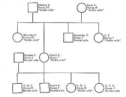 family pedigree maker corol lyfeline co