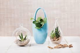 creating gardens in glass the san diego union tribune