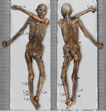scientists have mapped all of ötzi the iceman u0027s 61 tattoos