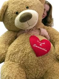 big valentines day teddy bears occasions valentines day valentines day teddy bears