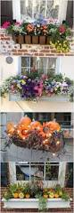 Outdoor Planter Ideas by Best 25 Outdoor Flower Boxes Ideas On Pinterest Flower Boxes
