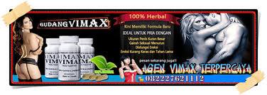 vimax papua agen vimax asli papua vimax izon asli papua
