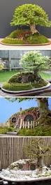 best 20 fairy terrarium ideas on pinterest terrarium terrarium