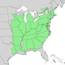 Yale Map White Oak Yale Nature Walk