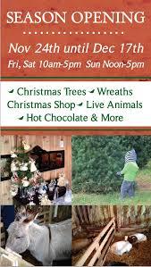 bartels farm christmas trees