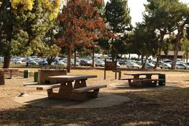 tables in central park area b city of fremont official website