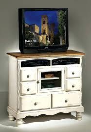 sauder homeplus basic storage cabinet dakota oak sauder home plus storage cabinet rumorlounge club
