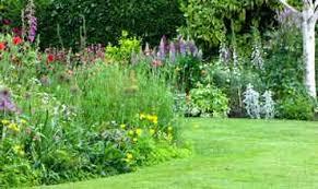 wedding plant gift lists by professional garden designer in dorset