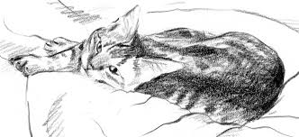 featured artwork toddler and tabby cat two sketches the