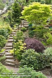 Steep Hill Backyard Ideas Los Angeles Homes Backyard Steep Hillside Search