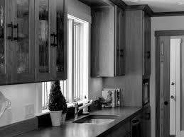 Standard Kitchen Cabinet Dimensions Kitchen Cabinet Future Kitchen Cabinet Sizes Design Help