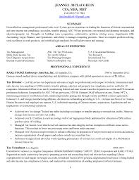 sample resume for mis executive resume examples tax manager frizzigame tax resume sample mis executive sample resume professional social