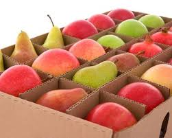 monthly fruit delivery the 25 best fruit delivery ideas on fresh fruit