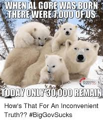 Truth Bear Meme - when al gore was born 0000 us turning point usa today only 30000