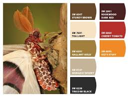 199 best color palettes images on pinterest paint colors color