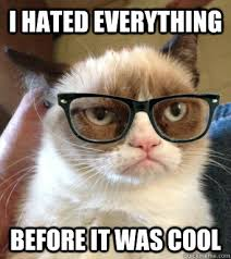 Hipster Cat Meme - i hated everything before it was cool grumpy hipster cat quickmeme