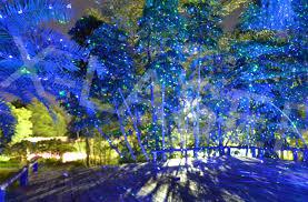 christmas laser lights for house lighting sale outdoor christmas laser lights bliss light dma homes