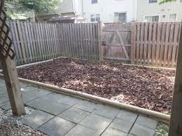 backyard dog potty area album on imgur