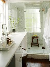 small bathroom with walk in shower and decorated with lucky bamboo