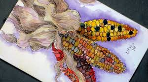 art for thanksgiving how to paint decorative corn in watercolor pen u0026 ink craft for