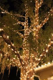 60 best christmas lights images on pinterest christmas ideas
