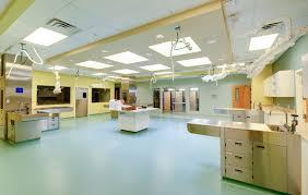 vet clinic floor plans bda architecture veterinary hospitals