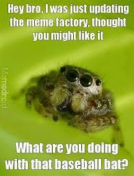 Spider Bro Meme - the best spider bro memes memedroid