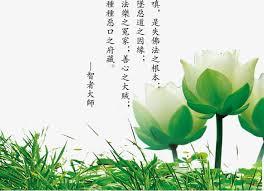 imagenes zen gratis hojas verdes creative zen cultura hojas verdes azul cielo pescado